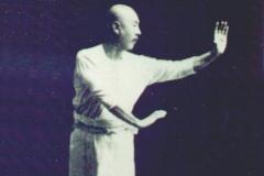 Zhang Zhao Dong in Green Dragon position.